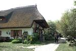 Galerie in Ahrenshoop